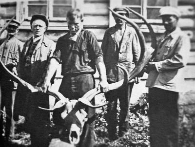 Находка исполинского оленя в 2-х км. от Сапожка в речке Сапожок  в 1926 году.